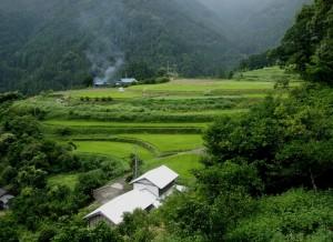 棚田を残す八重地の景観